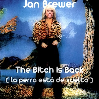 jan brewer by hip is everything
