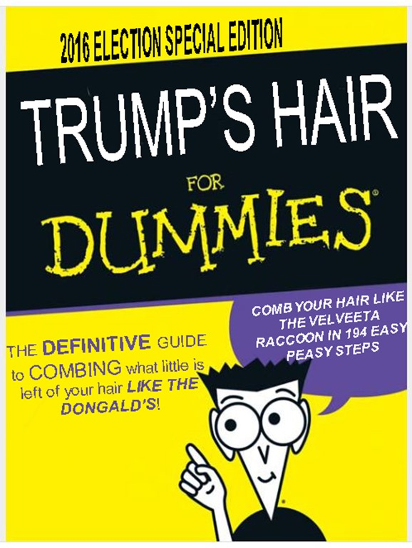 TRUMP HAIR FOR DUMMIES by hip is everything
