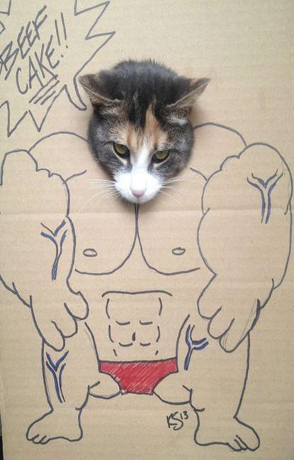 cardboard-kitten-art