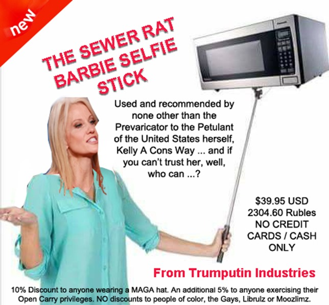 kellyanne conway selfie stick by hip is everything