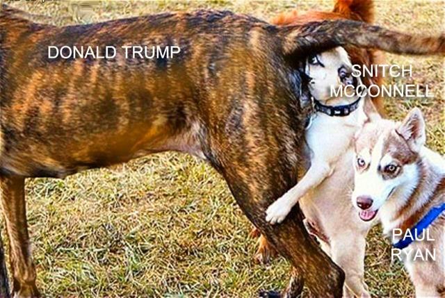 trump meets with gop