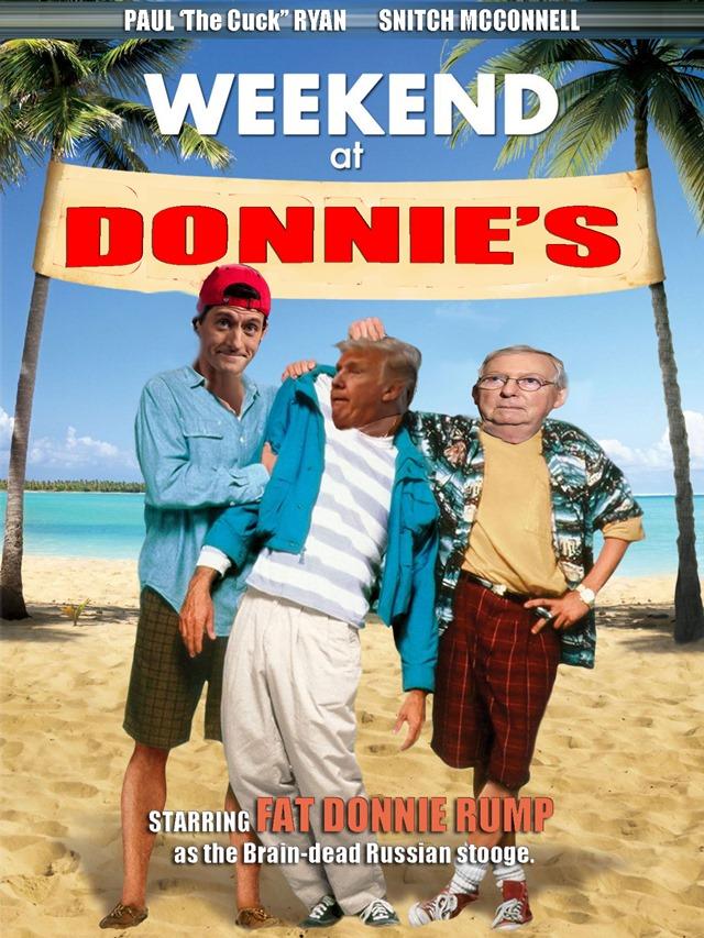 where's donnie
