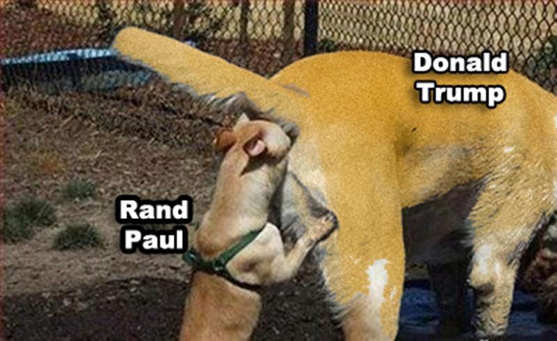 rand paul and trump