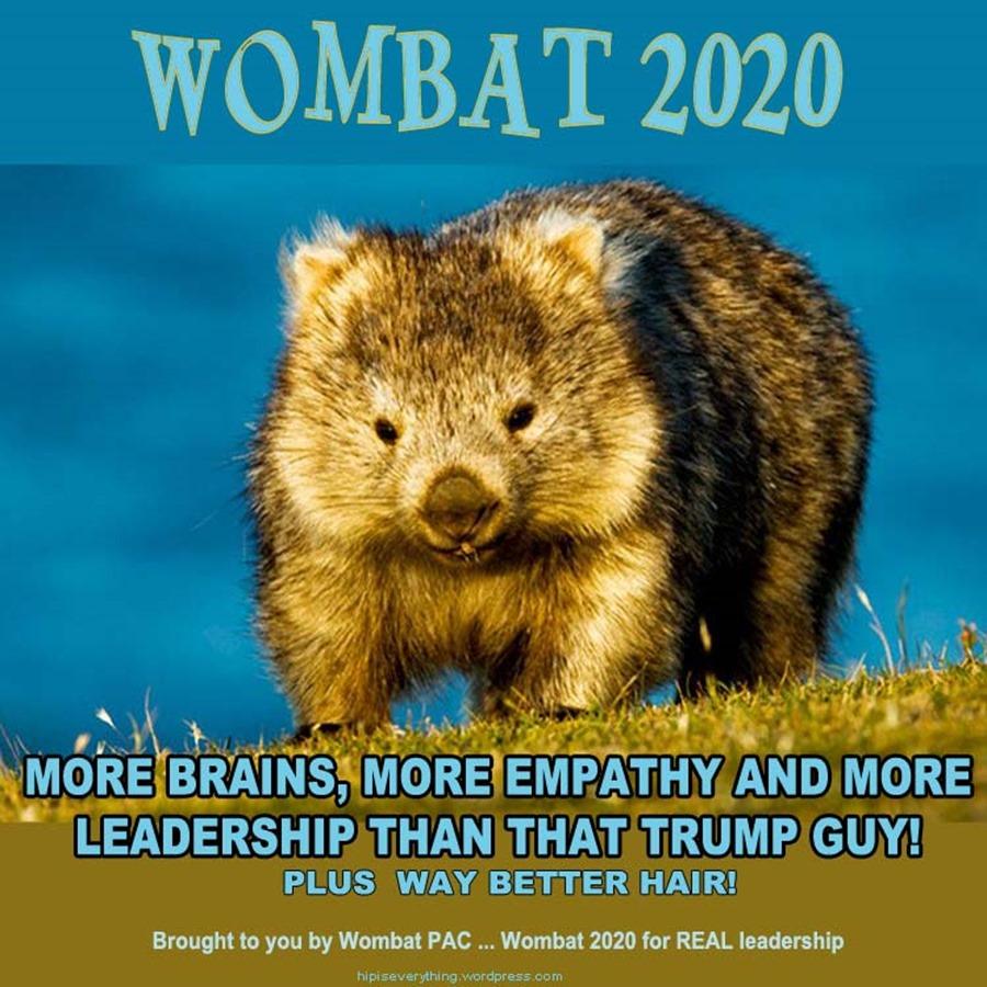 wombat 2020
